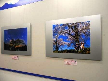 NHK 福島の桜 フォトコンテスト 入賞作品展